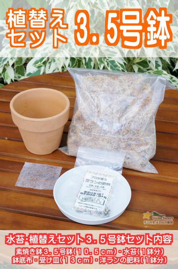 水苔・素焼き鉢・植替えセット3.5号鉢